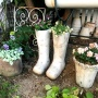 *植物の水遣りの回数と与える量は・・・