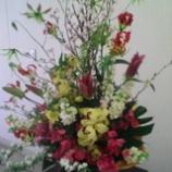 『立派なお花』の画像