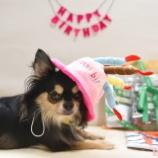 『3歳のお誕生日、おめでと~♡』の画像
