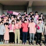 『ピンクシャツ運動』の画像