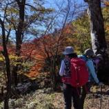 『紅葉の英彦山へ』の画像