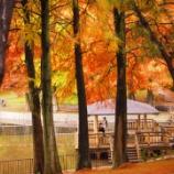 『【桃山台】 赤茶色と緑のグラデーション!桃山公園の紅葉状況とバリアフリー事情 2015年11月15日』の画像
