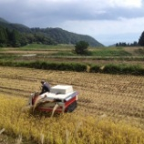 『今年も無事に米作りが終わりました』の画像