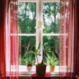 『北欧の窓はなぜ美しい?魅せる窓辺の演出術を学ぶ! 【インテリアまとめ・インテリアブログ北欧 】』の画像