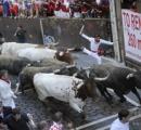 牛追いで首を突かれ男性死亡、スペイン