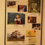 『「森の学校」海外の映画祭にエントリー』の画像