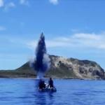 【動画】海上自衛隊公式PR映像「これが、海上自衛隊が世界に誇る『水中処分隊』だ!」