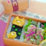 『イワシと紅しょうがの天ぷら弁当』の画像