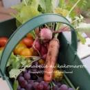 【収穫祭】実りの秋でジョウキゲン♪