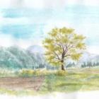 『アクリル絵の具で描く水彩画2018茨城と福島の風景、色鉛筆で描く庭の花』の画像