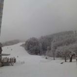 『雫石スキー場に雪が積もりました』の画像