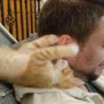 「うわあ、子猫が顔を襲ってくるー」実に幸せそうな男性(動画)