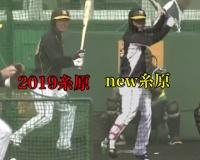 【画像】阪神・糸原の打撃フォームが高山っぽくなる