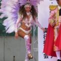 第15回湘南台ファンタジア2013 その18 (サンバ G.E.R.S.仲見世バルバロスの2)