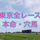 『土日東京全R予想結果発表』の画像