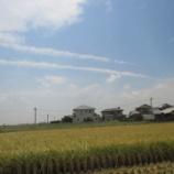 『【北九州】職業体験 稲刈り』の画像
