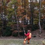 『狩旅』の画像