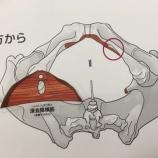 『からだの白地図を実際に使ってみよう!深会陰横筋編93』の画像