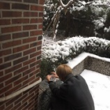 『雪だるま』の画像