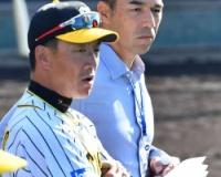ワイ阪神ファン、和田を打撃コーチに招聘しなかったことを咽び泣く