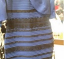 【決着編】議論再び。このドレス、スニーカーの色は何色に見える?