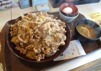 すき家の牛丼キングの量wwwwwwwwwwwww