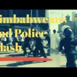 『ジンバブエの抗議行動と制裁解除と新しい通貨のタイミング。』の画像