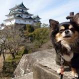 『和歌山へ遠足してきました☆ 📝』の画像