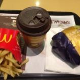 『とんかつバーガー食べてみた』の画像