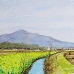 IKUOの水彩画集