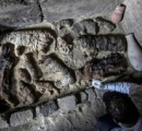 猫のミイラが数十体、珍しいスカラベのミイラも エジプト・サッカラで発掘