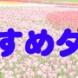 5/28 本日のダンディ娘ラインナップご紹介!