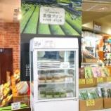 『JAL×はんつ遠藤コラボ企画【高知編】【番外編】茶畑プリン(池川茶園)』の画像