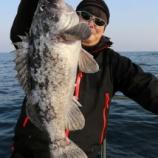 『4月29日 釣行 ロックフィッシュ』の画像