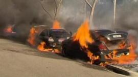 シドニー五輪公園で大火災が発生、原因は「たばこのポイ捨て」