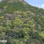 土木の風景