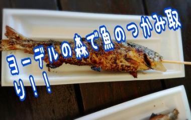 『ヨーデルの森で魚のつかみ取りに挑戦!!』の画像