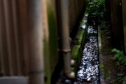 水をマネジメントしよう!~福島大学 流域環境システム研究室の紹介~