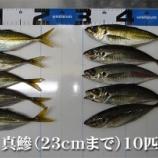 『鯵とグゥフゥに泣く!柳井市の黒鯛(チヌ)釣り #042』の画像