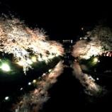 『春といえばやっぱりお花見!射水・高岡の桜の名所まとめました』の画像