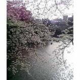 『千鳥ヶ淵から見た皇居と半蔵門の町』の画像