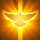 『私たちの最高のとりなし手は聖霊様です。』の画像