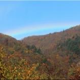 『虹と紅葉と青空』の画像
