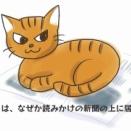 ネコは英語でキャット、では三毛猫は?