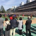 『神戸新聞杯2021 予想見解』の画像