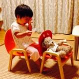 『娘が教えてくれる、単語学習は1日10コじゃダメ!』の画像