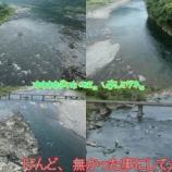 『【大鮎を狙うて】(ToT)の四万十川漁行』の画像