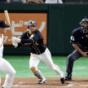 【野球】阪神近本マルチで150安打!長嶋氏セ記録までM3