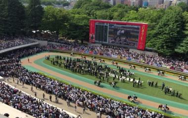 『2018東京優駿(日本ダービー)を振り返ります』の画像