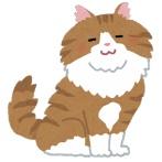 ちょっと困ったことになってしまった猫の行動wwwwwwwww